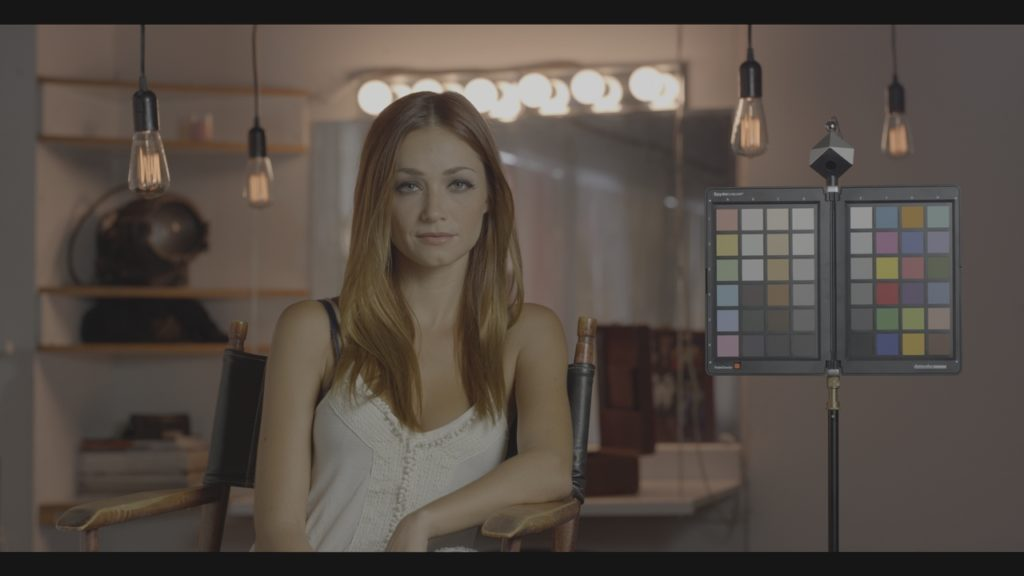 A real-world test image in Arri LogC (Originally REDLog3G10 RWG, converted using Resolve Color Management)